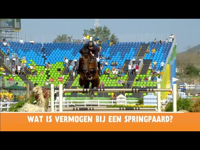 Het Vragenminuutje - Wat is vermogen bij een springpaard?