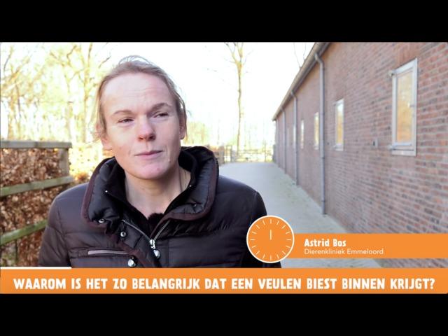 Het Vragenminuutje - Waarom is biest zo belangrijk?