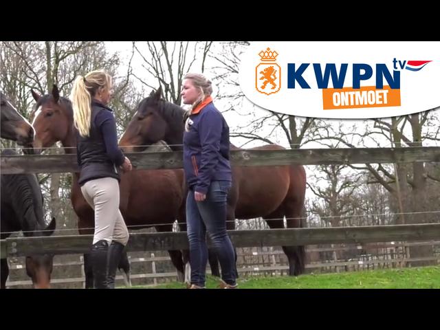 KWPN Ontmoet - De familie Van Straaten