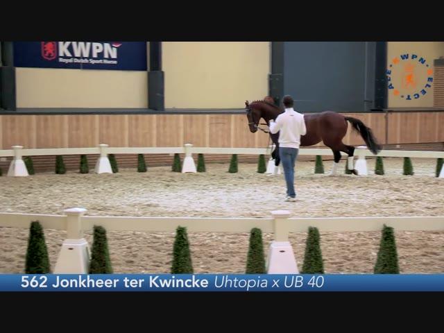 562 - Jonkheer ter Kwincke