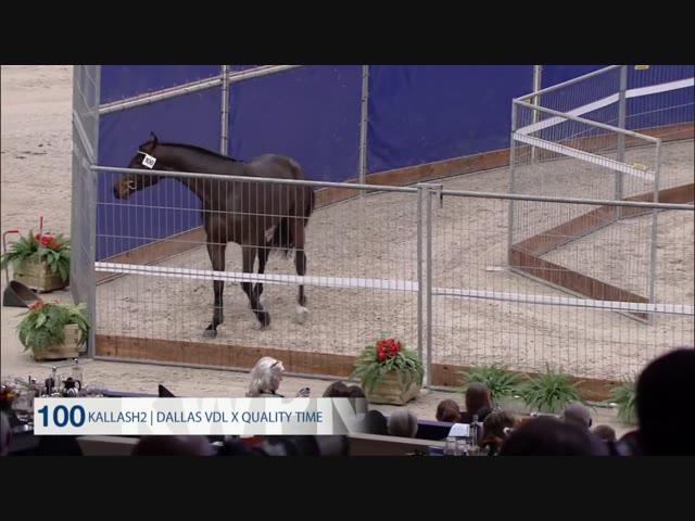 100 - Kallas H2