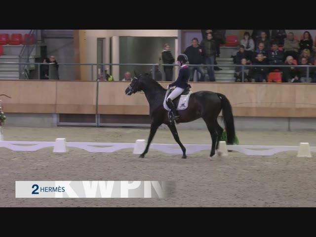 Hermès Dinja Van Liere