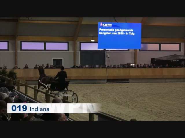 19 - Indiana
